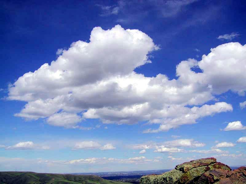 Cumulus_clouds_in_fair_weather