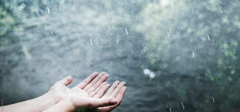 A girl in the rain: by Maka Gaurgashvili