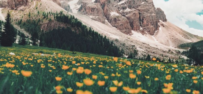 Happy is she who lives unnoticed: by Mariami Kavtarashvili